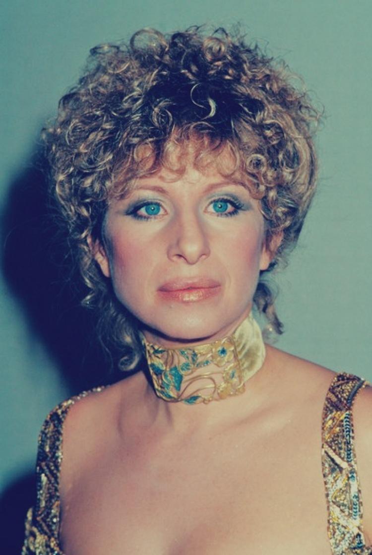 Daily Barbara Streisand Slash Zine